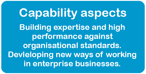 Capability Aspects. Building expertise and high performance against organisational standards. Developing new ways of working in enterprise businesses.